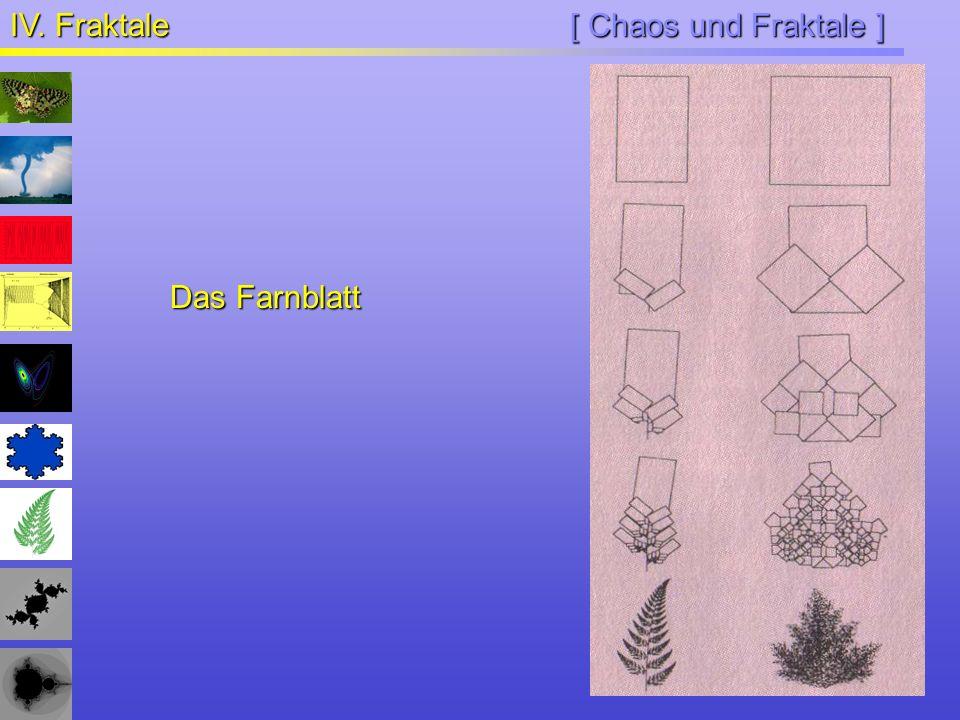 IV. Fraktale [ Chaos und Fraktale ] Das Farnblatt